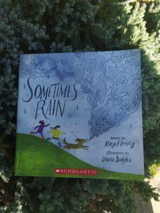 Sometimes Rain by Meg Fleming