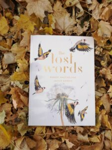 The Lost Words by Robert Macfarlane on a bed of golden maple leaves